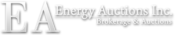 Energy Auctions